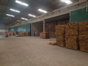 Hầm sấy gỗ